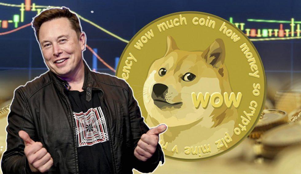 Top 9 Dogecoin Blackjack Sites | Play Blackjack With Doge
